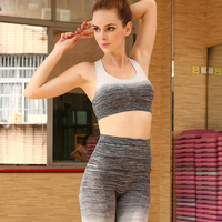Women Solid Color two piece set For Ladies New Style Plain Light Grey High Waist Fashion Fitness Elastic Leggings Suits
