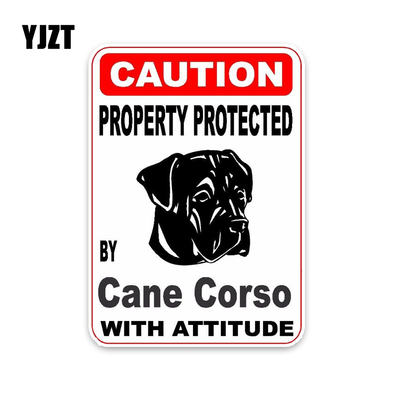 YJZT 10*14.2CM Property Protected By Cane Corso Dog Reflective Personality Car Sticker C1-4516