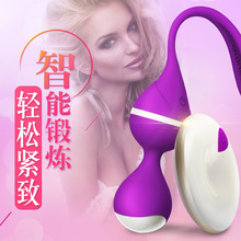 OMYSKY Wireless remote control Vibrating Egg Kegel Vaginal Balls Tight Exercise 10 Models Waterproof Sex Toys Vibrator For Women
