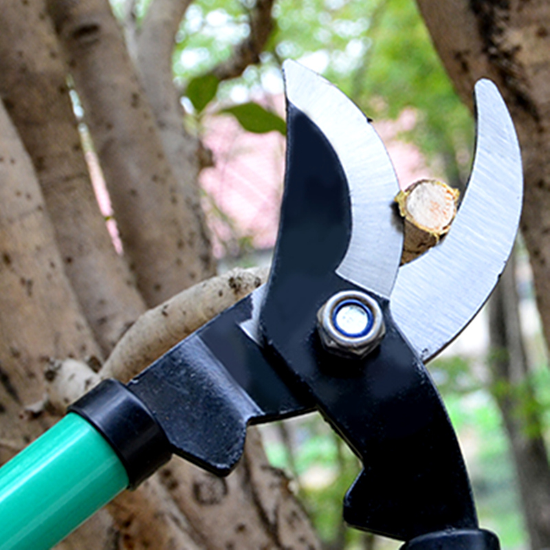 Tools : 60cm Telescopic Pruner Gardening Tree Shears Pruning Lopping Branches Trimmer Cutting Tool Shrubs Fence Cutter Scissors
