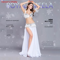 Luxury Tassel Women's Suits Belly Dance India Dance Attire for Halloween Carnival 4 pieces. Bra Belt Belt Skirt Armbands