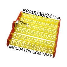 1 шт./лот двигатель инкубатора или лоток для яиц из 56/48/36/24 яйца позиции Размер мотора 220V или 110V опциональных птицы яйцо инкубационное устройство