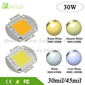 2Pcs/lot High Power LED Chip 30W Natural Cool Warm White COB SMD Diode For 30 Watt FloodLight Spotlight Bulb