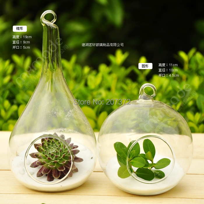 2pcslottransparent Terrarium Borosilicate Crystal Glass Hanging