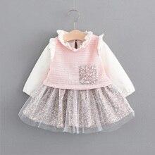 autumn newborn Dress cotton infant baby clothes dress for girl clothing princess family long sleeve dress bebe spring Tutu dress