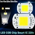No necesita controlador LED Viruta 50 W 30 W 20 W 10 W 5 W 220 V de Entrada inteligente IC de alta lumen led lámpara bombilla Para DIY LLEVÓ el Proyector Del Reflector