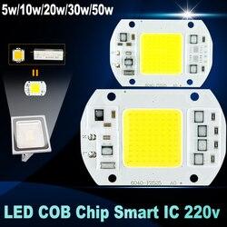 No need driver led chip 50w 30w 20w 10w 5w 220v input smart ic high lumen.jpg 250x250