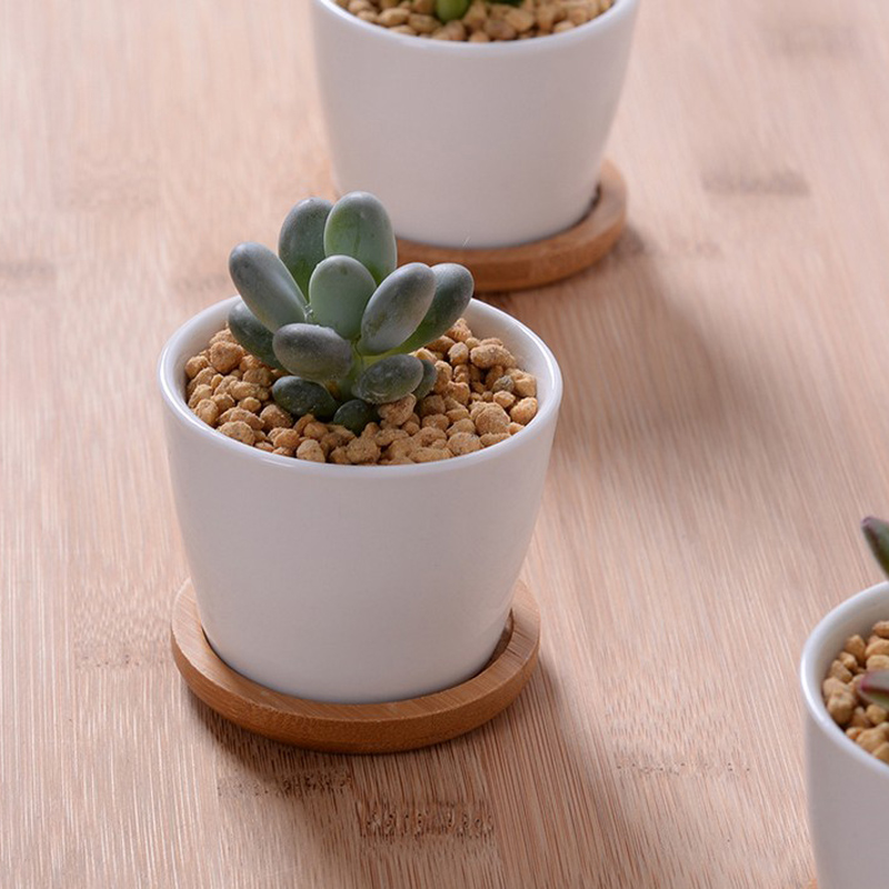 Indoor white ceramic plant pots crafts pottery planters for 6 ceramic flower pots