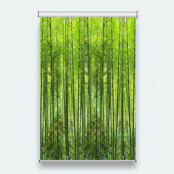 bamboo forest 3d roller blinds  Living room bedroom hotel Kitchen bathroom Customize any size roller blind