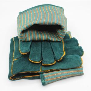 Image 5 - Anti bite veiligheid bite handschoenen voor Catch hond, kat, reptiel, dier Ultra lange lederen groene Huisdieren grijpen bijten beschermende handschoenen