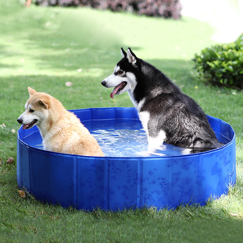 RU Domestic Delivery Large PVC Foldable Round Swimming Pets Pool Bathtub for Dog and Cat Bathing Tub Bathtub Dog Cats Washer