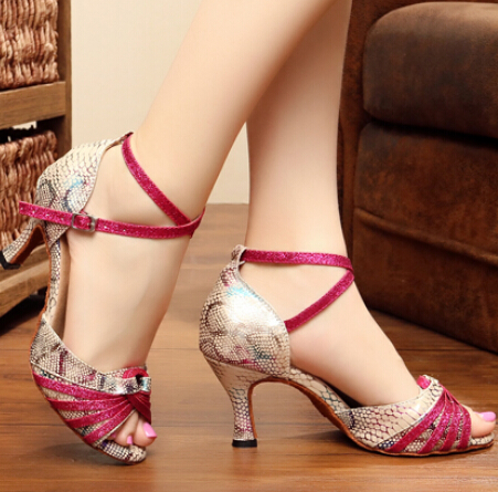 Nieuwe Salsa Tango Ballroom Dansschoenen Latin Dance Shoes