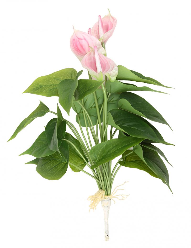 anthurium feuilles-achetez des lots à petit prix anthurium