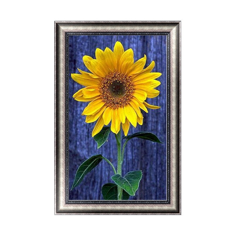 DIY 5D Diamond Painting Sunflower Diamond Embroidery Artesanato Hobby Stitch Kit Kat Decoracion Hogar Wall Sticker Home Decor