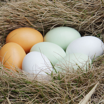 1 sztuk wysoce sztuczny jajko fałszywe symulacja żywności warzywa uczyć Ornament fotografia rekwizyty kreatywne prezenty zabawki dla dzieci tanie i dobre opinie 1 pc Wikliny 4 5*4 5*6 2 cm opp bag 1pcs 0 005kg Wooden