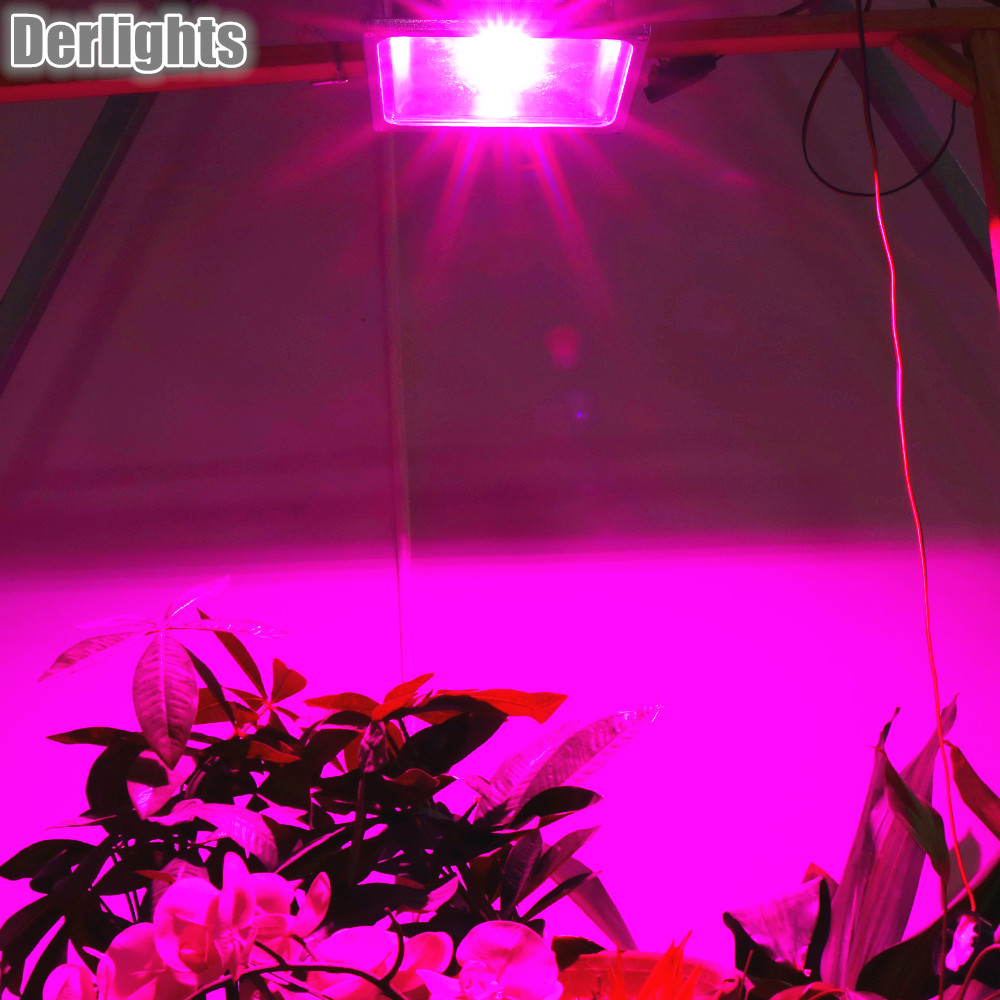 4pcs/Lot 50W LED Flood Grow Light Plant Lamp for Indoor Greenhouse Tent Hydroponics System Plants Flower Seeds Vegetables Herbs