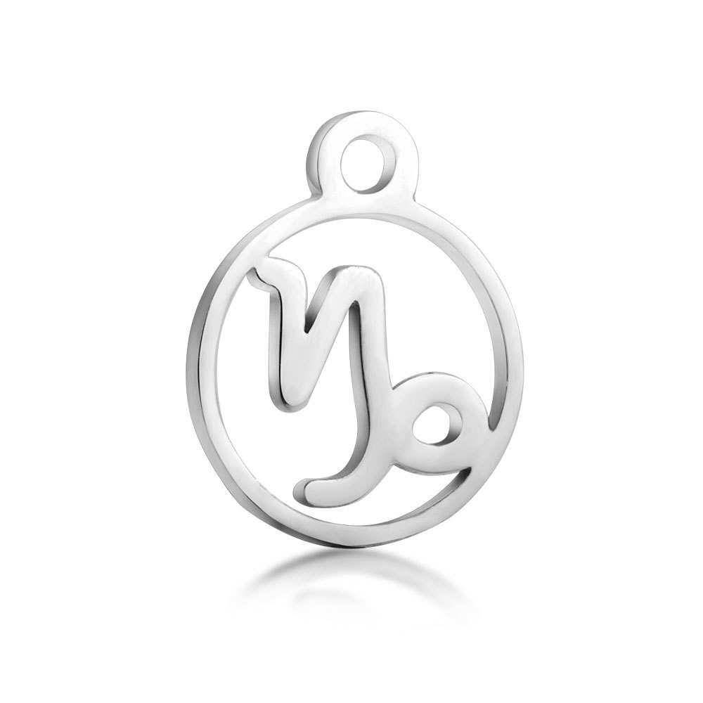 10pcs 316L Stainless Steel High Polished Silver Tone 12 Constellation Zodiac Sign Charm Pendant for DIY Necklace Jewelry Making in Charms from Jewelry Accessories