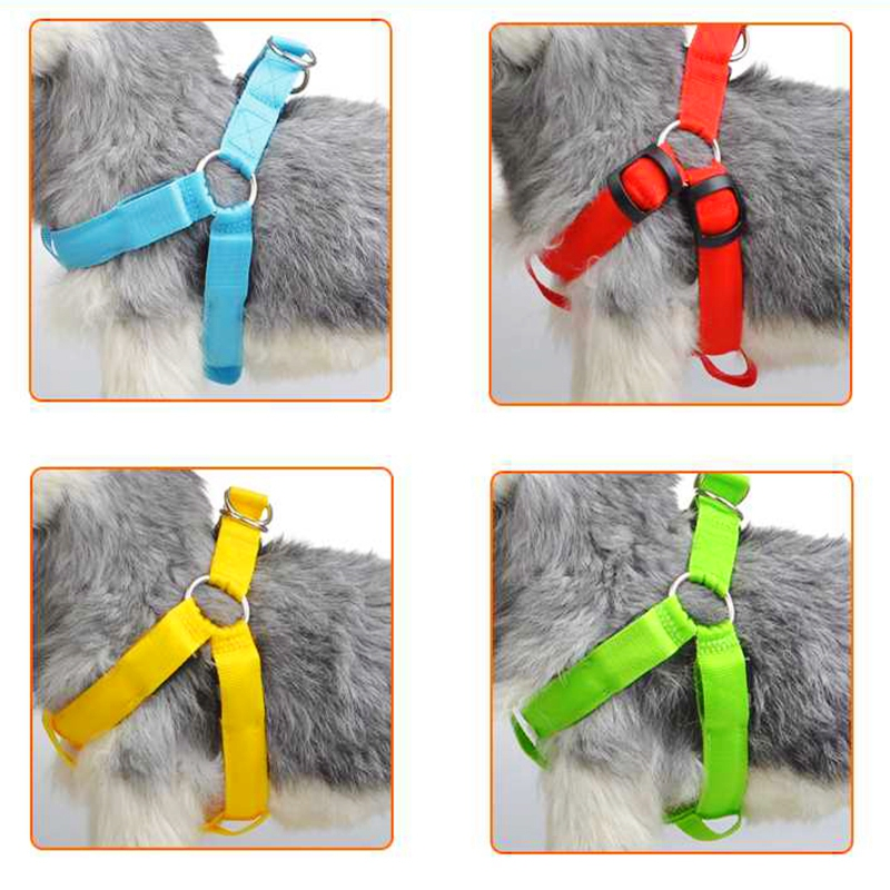 Image 3 - Rechargeable LED Nylon Pet Dog Cat Harness Led Flashing Light Harness Collar Pet Safety Led Leash Rope Belt Dog Accessories-in Harnesses from Home & Garden