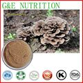 Chinese Herb nourishment Grifola frondosa extract Prevent cancer Grifola frondosa P.E. 600g