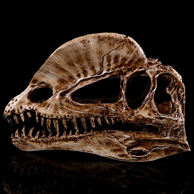Simulation Resin Crafts Home Decorations Accessories Furnishings Exhibition  Dilophosaurus Skull Study Model