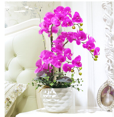 simulation of Phalaenopsis flowers floral decor decoration room set indoor potted orchids