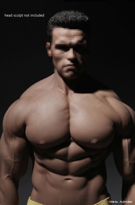 Image 4 - PL2016 M34 PL2018 M35 TBLeague 1/6 Scale Male Super Strong Seamless Stainless Steel Body Muscular Figure Model For Arnold Head