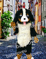 Realistic Bernese Mountain Dog Mascot Costume Adult Size Lovely Snowman Theme Anime Cosplay Costumes Carnival Fancy Dress Kits