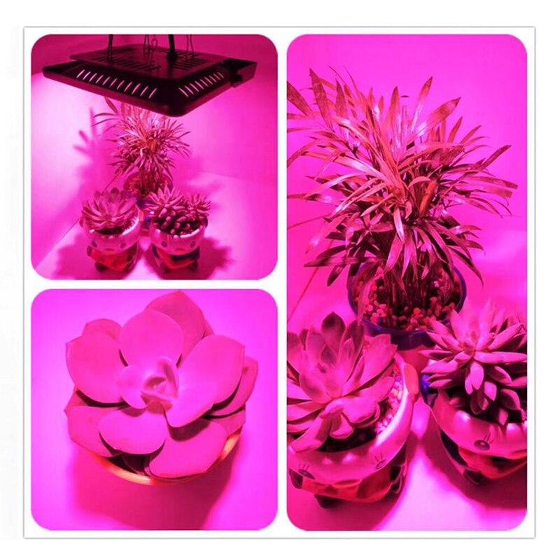 LED Lamp Chip For Plants 110V 220V Full Spectrum LED Grow Light Smart IC 30W 50W 70W Interior Planting Vegetables Flowers COB
