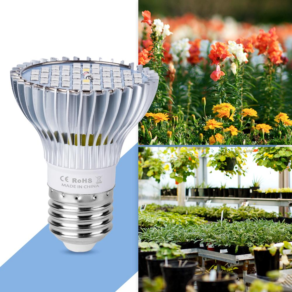 E27 Plant Grow Light Led Full Spectrun E14 Indoor Seedling Led Phyto Lamp 30W 50W 80W Hight Power Lamps For Grow Tent AC85 265V in LED Grow Lights from Lights Lighting