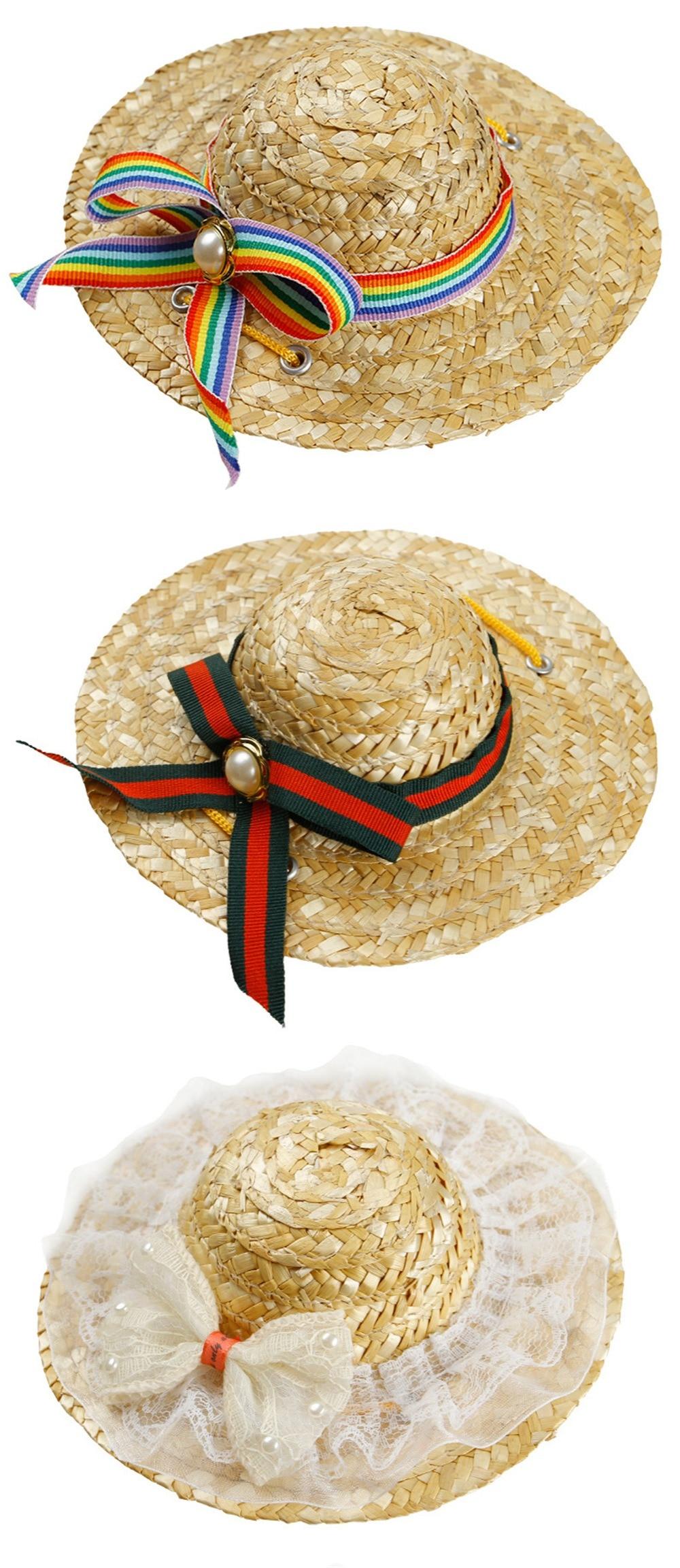 dog beach hat