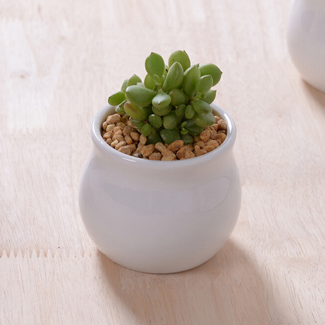 Garden suppiles indoor round white ceramic planters ceramic mini ...