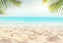 Laeacco Sea Beach Sands Palm Tree Scene Photography Backdrops Customized Photographic Backgrounds For Photo Studio