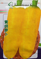 1 original pack 400+pcs Solar Yellow Carrot Seeds, garden vegetable Gold Vault Jumbo vegetable seeds free shipping