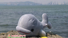 creative gray big head plush dolphin toy stuffed lovely whale doll gift about 38cm
