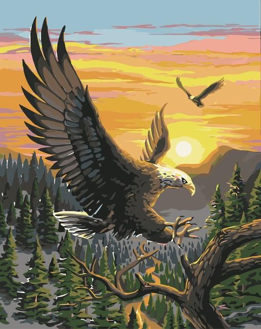 Nueva águila by números pintura al óleo digital de diy pintura ...