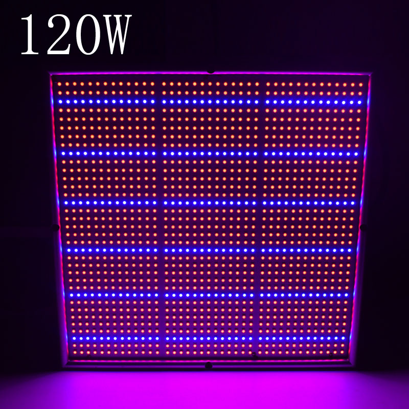 120W SMD 1131Red 234Blue Hydroponics Plant Lighting 85-265V LED Grow Light for flowers and vegetable free shipping 2016 new led grow panel 165w led grow light 1131red 234blue led plant lamp for flowers grow box tent greenhouse grows lighting
