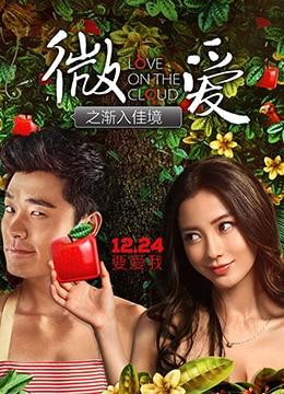 《微爱之渐入佳境》2014年中国大陆喜剧,爱情电影在线观看