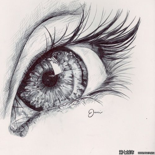 Newthe Print Oil Painting  The Beautiful Eye Made By