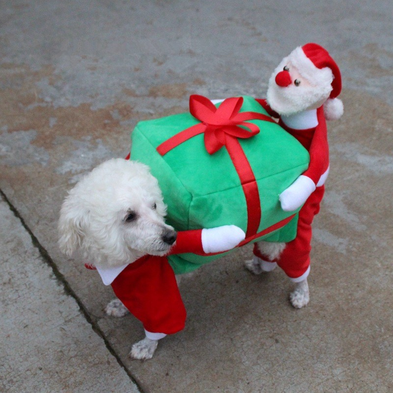 Christmas Dog Clothes (6)