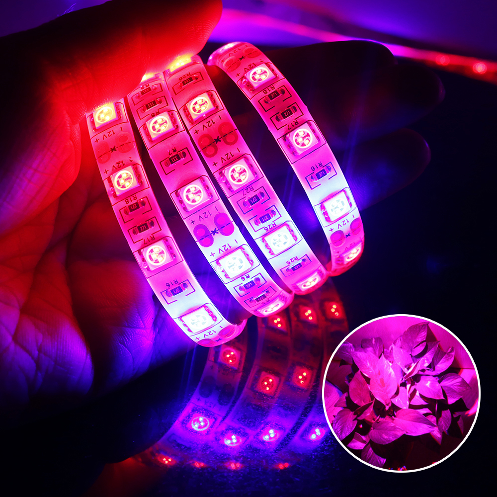 5Meter 5050 LED Strip Plant Grow Lights DC12V 300leds 3:1 4:1 5:1 Red Blue light for Gre ...