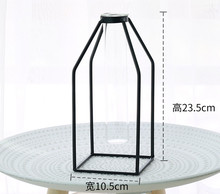 Abstract Black Iron Cage Glass Vase, For Dried Flower Or Water Planting Vase
