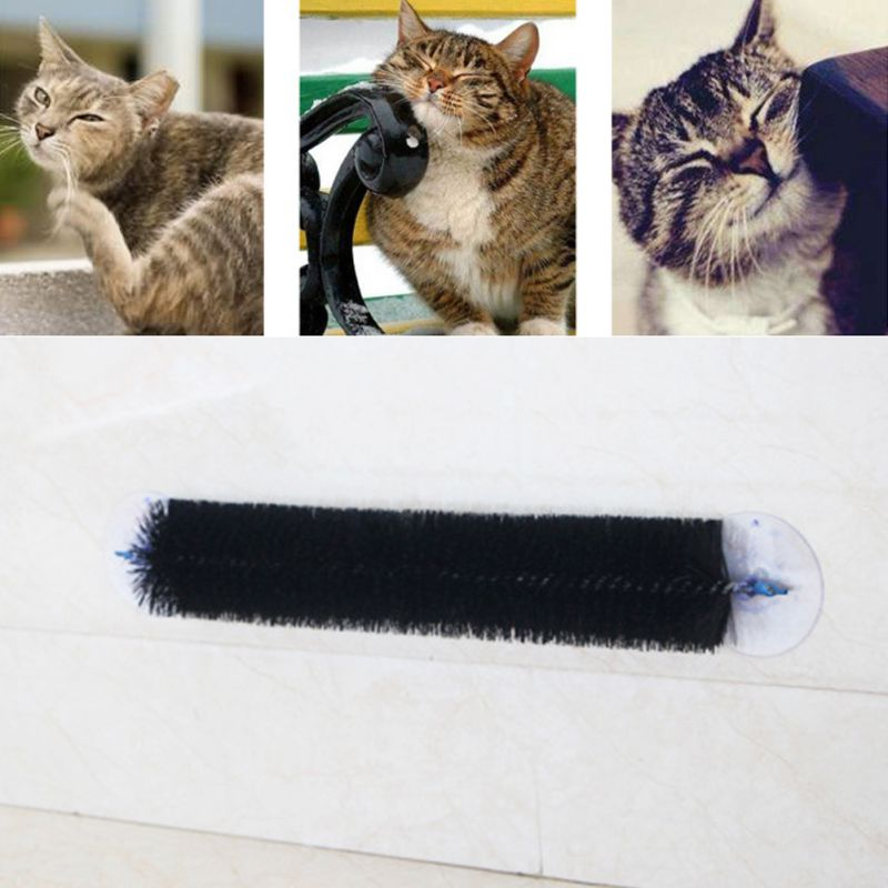 2018 mascotas gatos Self Fur aseo cepillo masajeador rascador Stroking Row Board Brusher Cat Toy Brushs Sticky dispositivo suministros