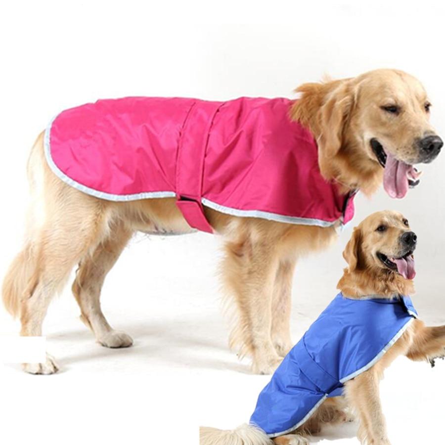 Asombroso Trajes Para Perros Para Bodas Viñeta - Ideas de Vestido ...