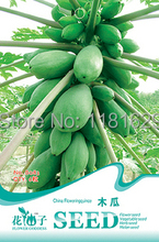 (Mix minimum order $5)1 original pack 6 pcs Papaya Seeds Pawpaw melon Tree  free shipping