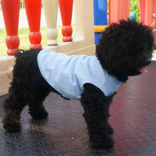 Glorious Kek With Tracking Number Basic Breathable Cotton Plain Dog