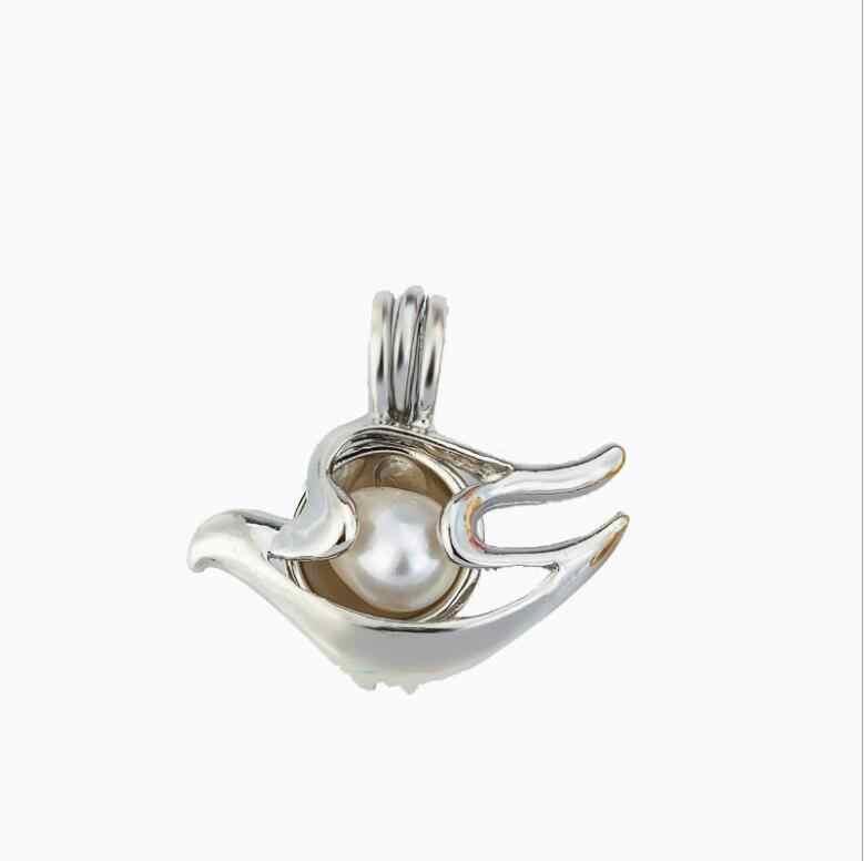Plus de 30 styles perle Cage résultats de bijoux Cage médaillon pendentif huile essentielle diffuseur médaillon pour huître perle femmes hommes
