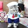 Cat Sailor Clothes