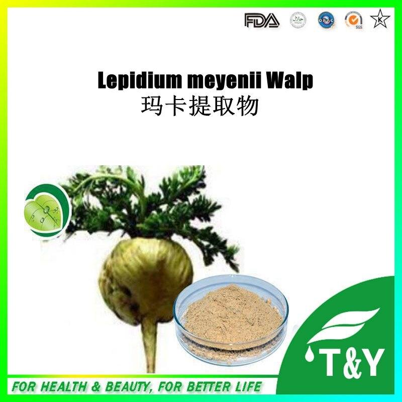 ФОТО Factory direct sale competitive price Lepidium Meyenii Extract maca peru 1000g/lot