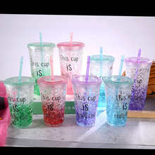 Plastic Water Bottle fruit Ice Bottle Creativity Double-Layer Cooling