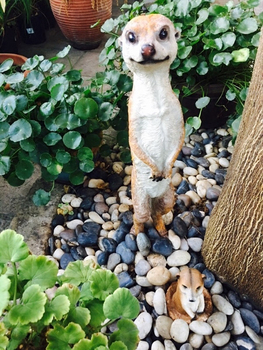 Mongoose meerkat sculptures garden decoration artificial animal crafts home decor animal statues